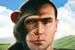 Inner Chimpanzee